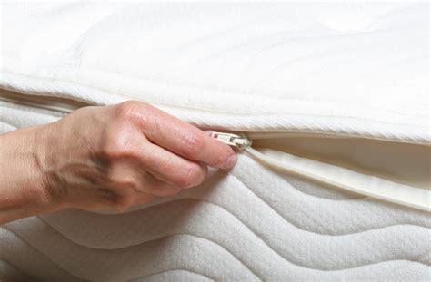 Bed Bugs Versus The Memory Foam Zippered Mattress Cover
