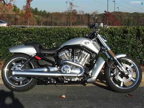 Harley Davidson V-rod Muscle, Silver, Motor-bike