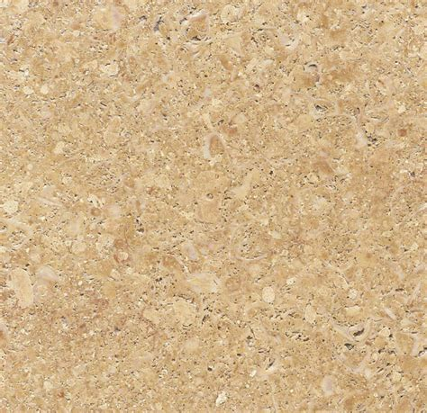 golden shell sandstone international natural stone