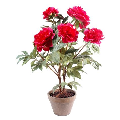 plante artificielle pivoine en pot 69 00
