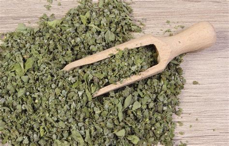 marjoram substitute different oregano substitutes to use based on the type of dish