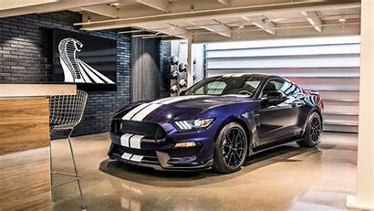 Mustang Shelby Ford Gt350