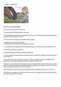 Que Donner A Manger A Un Ecureuil Sauvage : au gens qui donne du pain nos loulous 2 forum cheval ~ Dallasstarsshop.com Idées de Décoration
