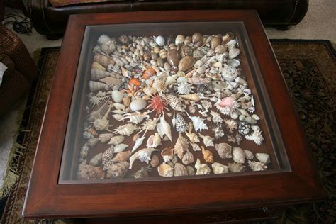 shells under glass coffee table after many years of