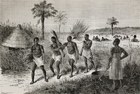 The trans-Atlantic slave trade and local political ...