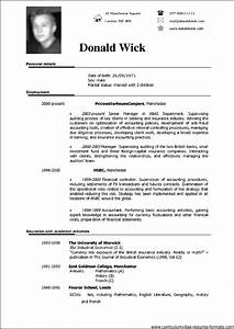 professional resume template doc free samples examples With resume format template doc