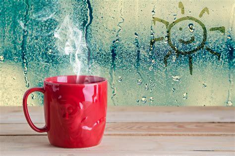 ways  combat condensation   windows