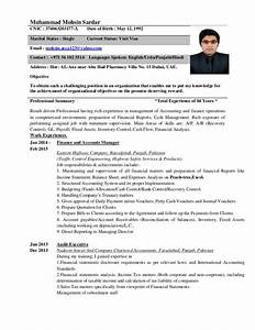 Resume For Accountant In Word Format  Resume Template Easy   123easyessays
