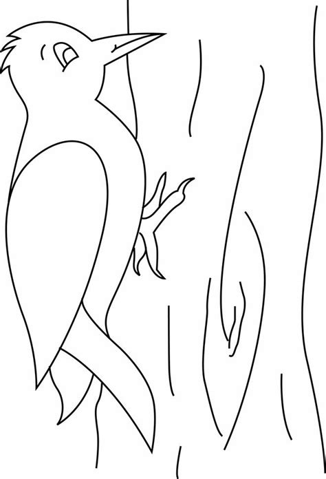 kindergarten coloring pages woodpecker coloring pages preschool and kindergarten