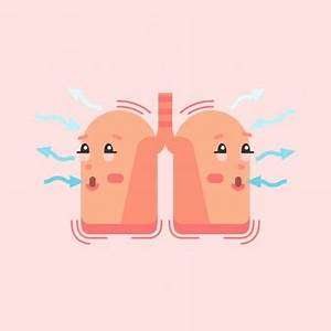 Respiratory System Vectors  Photos And Psd Files