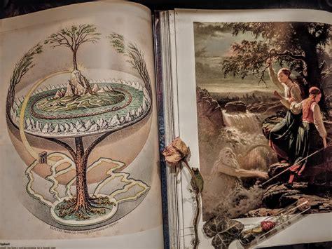 Od najmanjeg korijena do krošnje i zlatne grane, drveće ...