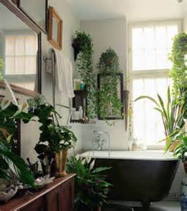 bathroom plants culture scribe
