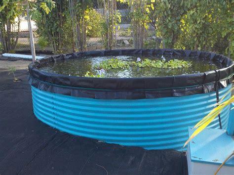 whole house filter aquaculture and aquaponics eco products
