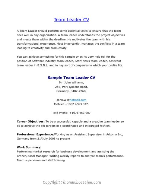 Resume For Team Leader Position by Styles Sle Description Warehouse Lead Team Leader