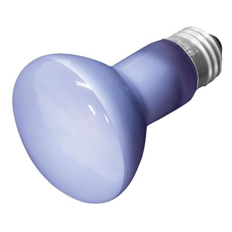 shop ge 45 watt for indoor or enclosed outdoor dimmable