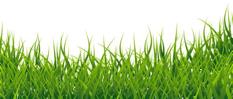 Clipart Grass Sw Clipart Grass Border Pencil And In Color Sw