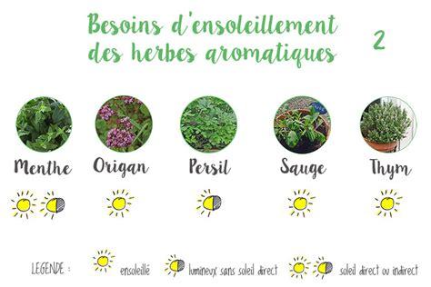 herbes aromatiques en cuisine herbes aromatiques cuisine liste table basse relevable
