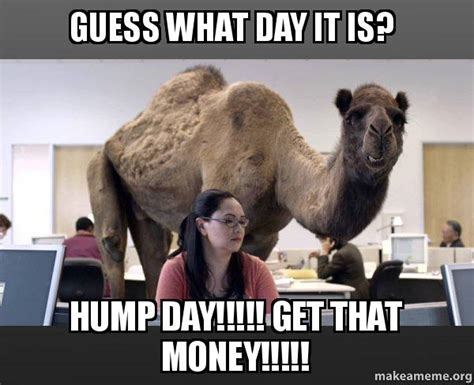 Hump Day Camel Meme - guess what day it is hump day get that money hump day camel make a meme