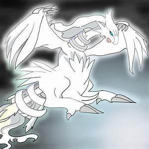 View topic - The Rise of Reshiram Pokemon Rp Accepting ...