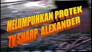 Cara Melumpuhkan Protek Tv Sharp Alexander New