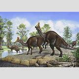 Jaxartosaurus | 900 x 632 jpeg 163kB