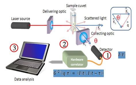 dynamic light scattering cordouan technologies nanoparticle size