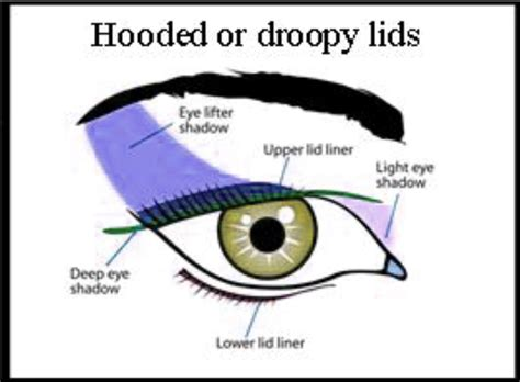 Diagram For Eye Makeup by Droopy Hooded Eye Chart Eyeshadow Correction