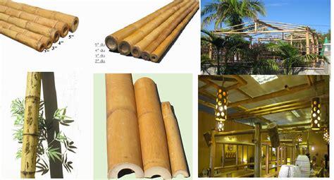 bamboo home decor bamboo and supplies wholesale bamboo poles bamboo
