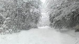 Noreaster snow storm power lines Halloween snow storm ...