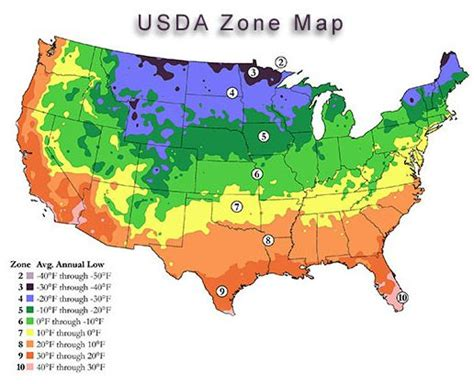 What Zone Am I In For Planting?  Gardening & Plant Life