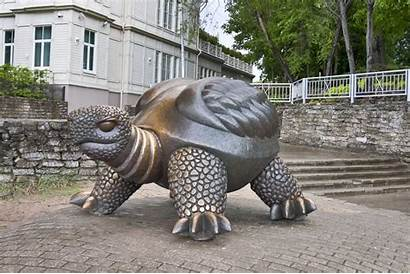 Famous Turtle Bronze Sculpture Sculptures Sculptor Latvia