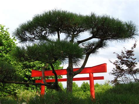 Japanischer Garten Elemente by Oase Der Ruhe Ein Japanischer Garten Heimwerker Tipps