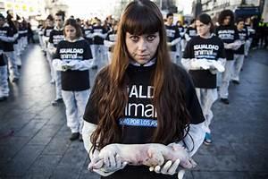 International Day Of Animal Rights