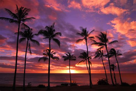 sunset maui beach hawaiian oahu wallpapersafari getaway nearly activities