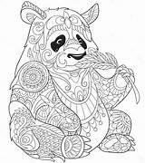 Panda Coloring Printable Zentangle Colorir Desenhos Sheet 101coloring Coloringonly Mandala Pandas Animal Sheets Various sketch template
