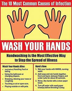 10 Most Common Sources Of Infection From Unwashed Hands