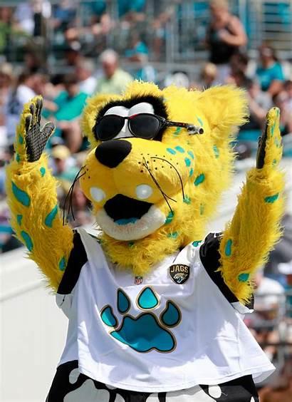 Mascot Jaguars Jacksonville Ville Jaxson Ebola Pittsburgh