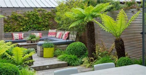 idee decoration chambre garcon déco jardin avec palmier