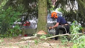 Baum Fällen Technik : baum in garten f llen mit hilfe eines greifzuges youtube ~ A.2002-acura-tl-radio.info Haus und Dekorationen