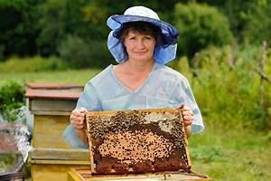 Comment Faire Une Ruche : comment faire du miel la pause jardin une ruche dans mon jardin ~ Melissatoandfro.com Idées de Décoration