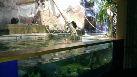 aquarium de la ville de jean du gard restaurants avenue de la r 233 sistance st jean du