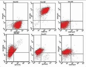 Surface Markers Of Badscs Determined By Flow Cytometry