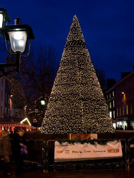 christmas tree  york  stock photo public domain