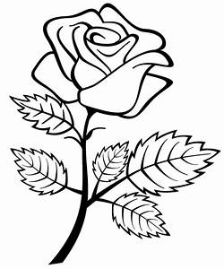 Rose Drawings For Kids - ClipArt Best