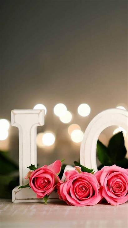 Flower Rose 4k