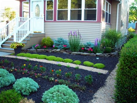 pflanzen für den vorgarten vorgarten mit pflanzen gestalten 40 ideen wie sie ein frisches flair in den vorgarten bringen