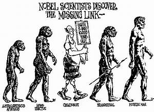 Evolution Of Men And Women | www.pixshark.com - Images ...