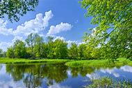 Beautiful Spring Tree Landscapes
