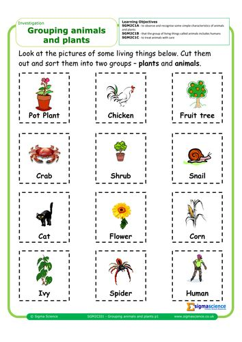 sgmci grouping animals  plants  sigmascience