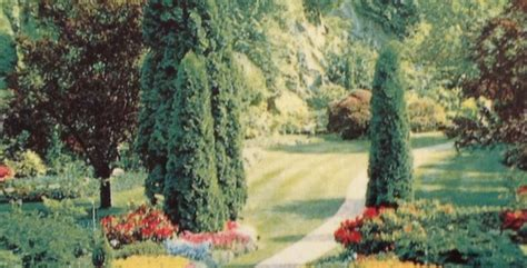 come irrigare un giardino irrigare il giardino biodinamico quantit 224 acqua orto